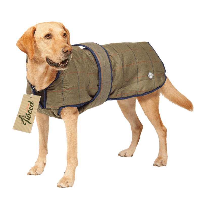 Luxury Tweed Showerproof Dog Coat by Danish Design