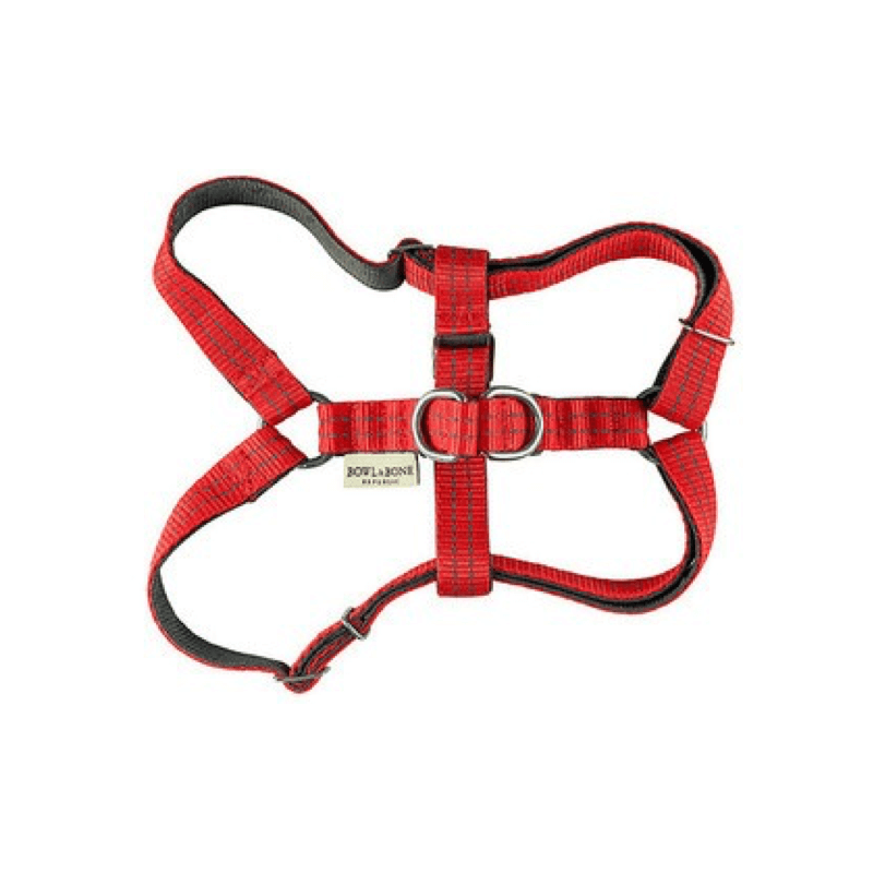 Bowl and Bone Active Red Dog Harness and Lead Set