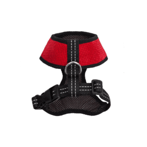 Bowl and Bone Candy Red Dog Harness and Lead Set