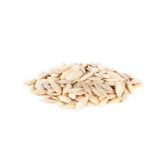Slim Pumpkin Seeds (Mashadi,Salted) - Tavazo Corporation