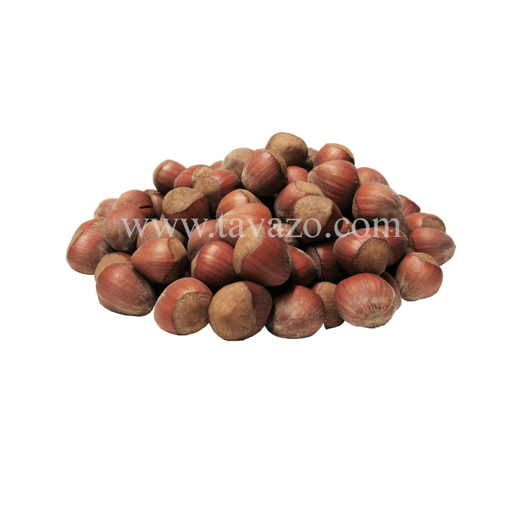 Hazelnuts In Shell (Raw) - Tavazo Corporation