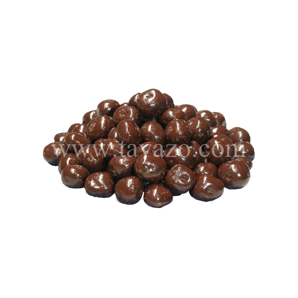 Chocolate Covered Ginger Chunks - Tavazo Corporation