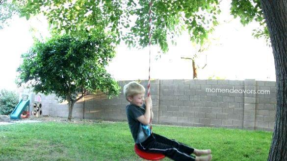 Out Of The Ordinary Toddler Tree Swing