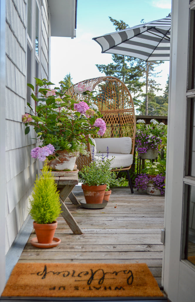 Small Space Potted Flower Garden Tour