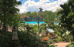 Disney's Typhoon Lagoon vs. Disney's Blizzard Beach