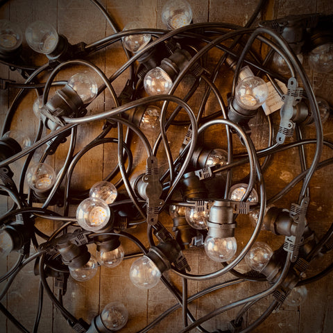 Low Voltage 24volt Festoon