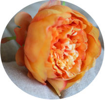 Load image into Gallery viewer, Peonia Naranja