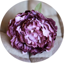 Load image into Gallery viewer, Peonia rosa empolvada