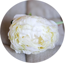 Load image into Gallery viewer, Peonia blanca