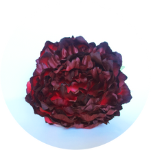 Load image into Gallery viewer, Peonia granate