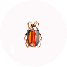 Load image into Gallery viewer, Broche Insecto