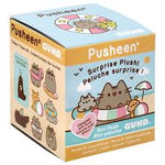 Pusheen Mystery Box