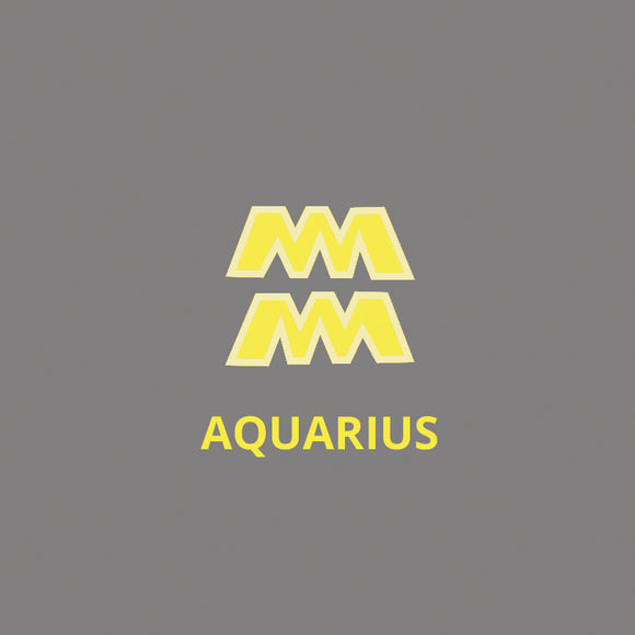 Aquarius- January 21 to February 19