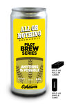 Anything Is Possible - Pilsner - 296 ml