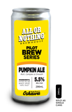 Pumpkin Ale - 296 ml - All or Nothing Brewhouse