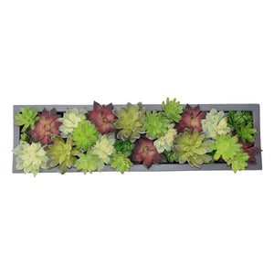 "32"" Rectangular Planter with Succulents"