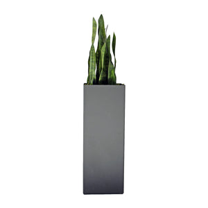 Aluminum Tower Planter with Snake Plant