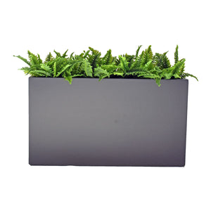 Fibreglass Trough Planter with Ferns