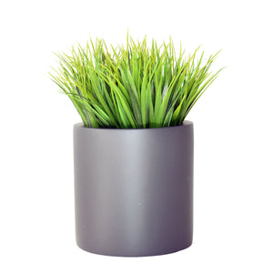 "8"" Cylinder Planter with Grass"
