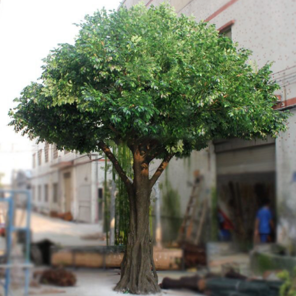 Canopy Tree - Green Ficus, Synthetic Trunk