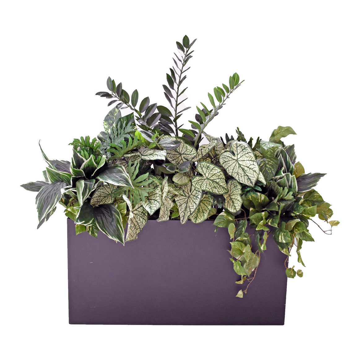 Pre-Made Large Arrangement - Tropical Greenery in Metal Trough