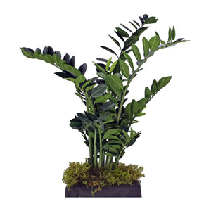 Fibreglass Fluted Planter with Zamia