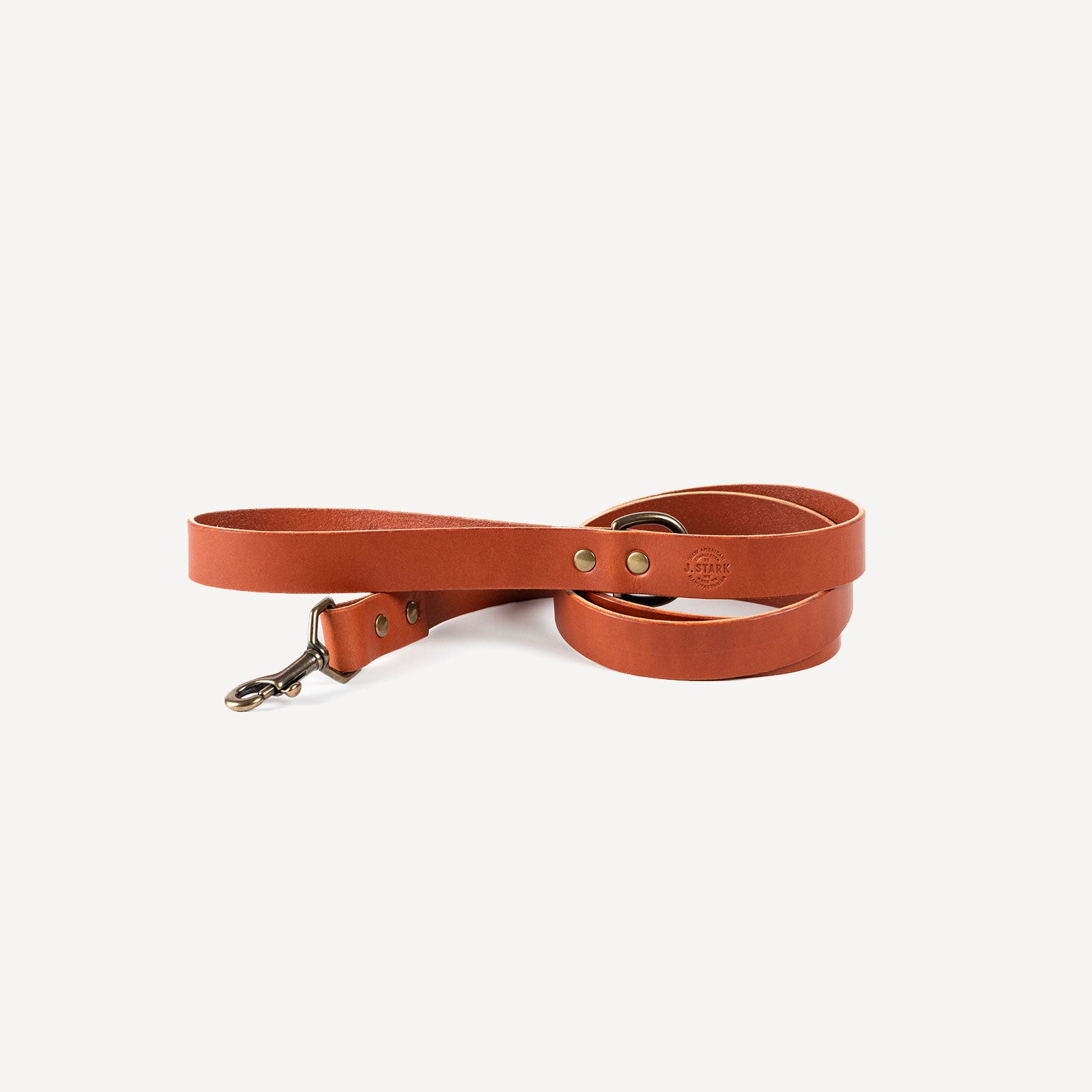 Carter Dog Leash Standard