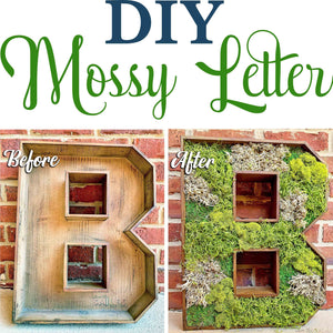 Learn how to turn a plain store-bought letter into a moss-covered beauty! It only takes a few supplies and a couple hours and would be the perfect addition to any home!   DIY Wooden Mossy Letter Home Decor Last year, I shared an Easter project where...