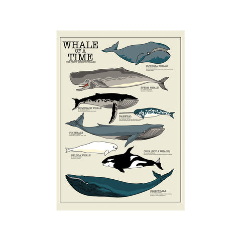 Whale of A Time Print - abandon-ship-art