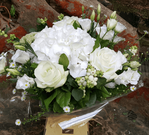 Flower Bouquet - Rose and Hydrangea - Yeomans Flowers