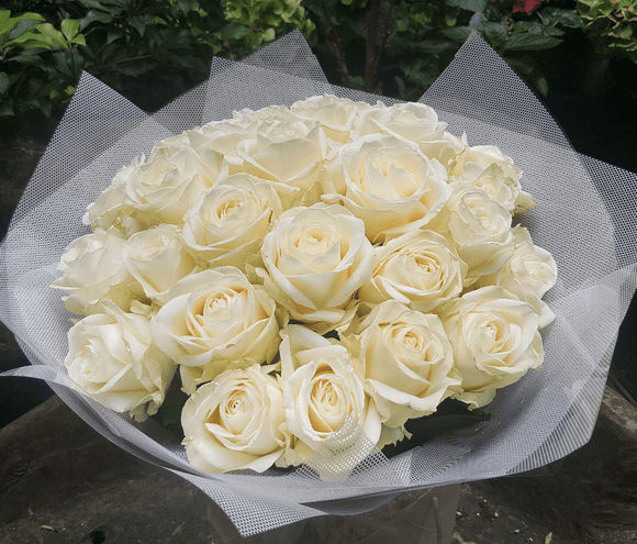 Only Rose - HTB129 - Yeomans Flowers