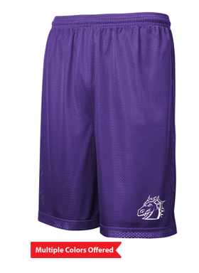Spring PTO '20 - Youth/Adult Classic Mesh Shorts (Dragon Head)