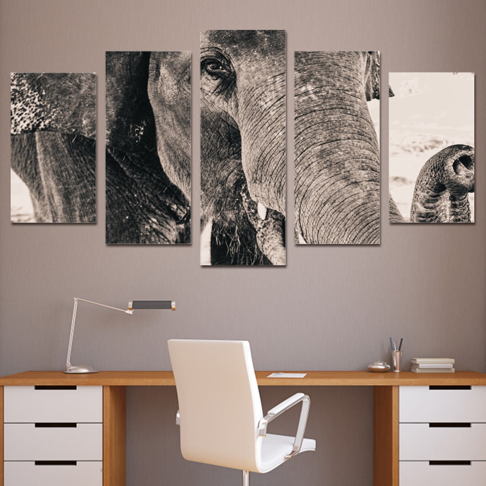 5-Piece Black & White Elephant Closeup Canvas Wall Art