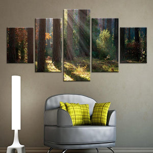 5-Piece Redwood Forest Tree Light Canvas Wall Art