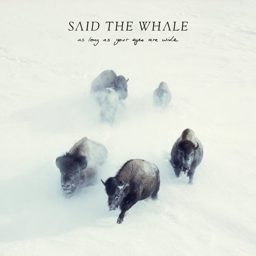 Said The Whale - As Long As Your Eyes Are Wide CD