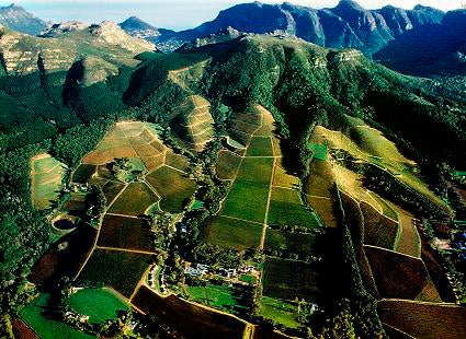 An aerial view of Klein Constantia's vineyards