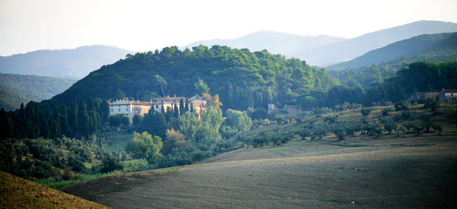 Terriccio-Estate