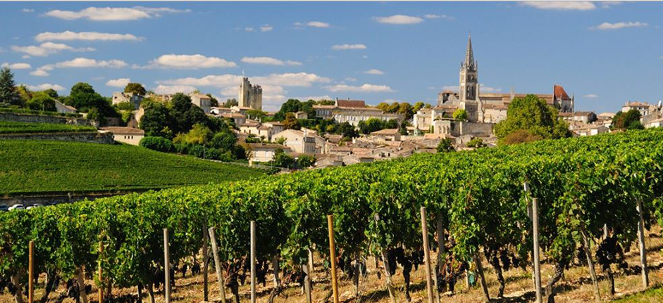 saint-emilion-vineyard