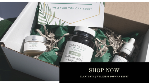 Harmony CBD starter kit, white box containing  green packaging and three full size CBD products click t shop now