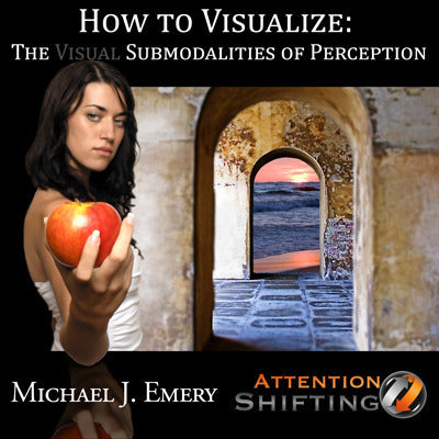 How to Visualize - The Visual Submodalities of Perception