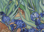 "Load image into Gallery viewer, Vincent Van Gogh ""Irises"" Fine Art Print"