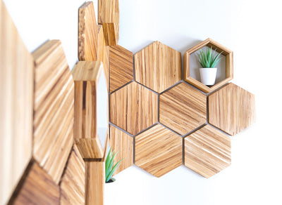 Eco-Friendly Wall Decor Hexagon Shelf