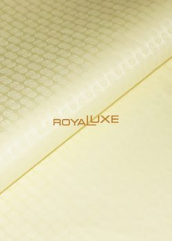 Citron MEILLEUR –Royal Luxe Bazin Riche