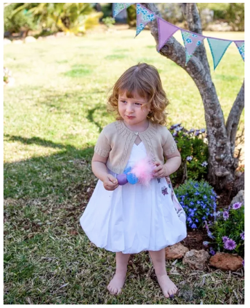 Honigman dress - 2 yrs