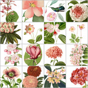 Tile Sticker Pack of 16 Vintage Rose Pink Botanic Floral Illustrations