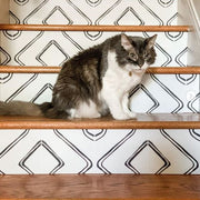 Harlow Stair Riser Stickers