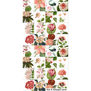 Botanic Floral Illustrations Wallpaper