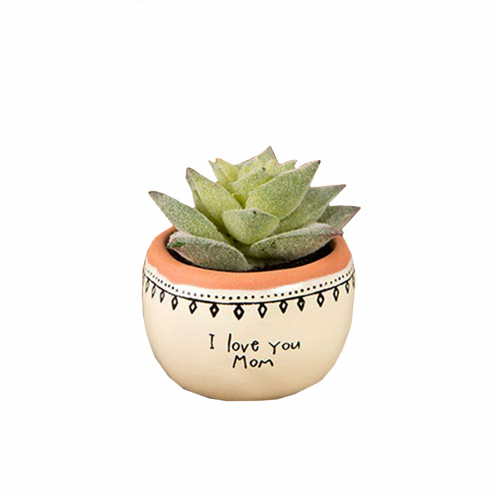 I Love You Mom Succulent