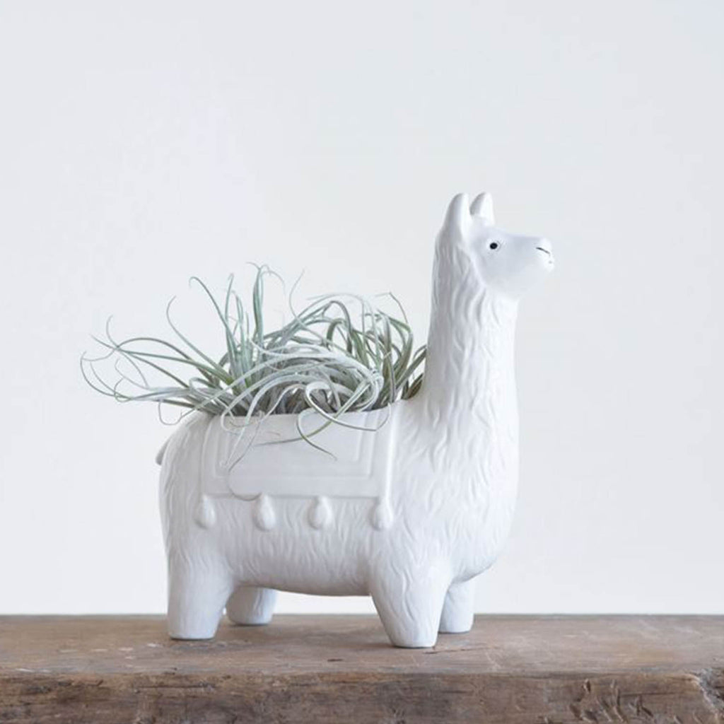 Ceramic Llama Planter - 19 Dollars Or Less