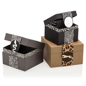 Animal Bandy Box